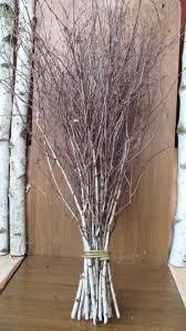 birch tree decor – ezpassub
