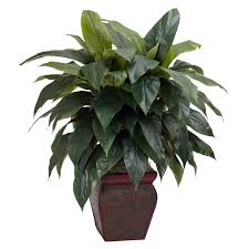 Fake Plants Home Depot 35 Inch Cordyline In Decorative Vase Decorative Vases And Silk