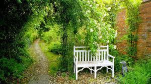 Chair In Garden Chair In Garden Wallpaper