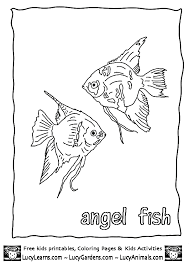 tropical angel fish coloring page free print out coloring pages