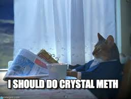 Crystal Meth Meme - i should do crystal meth one percent cat meme on memegen