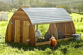 how to build a simple chicken house with simple chicken coop free