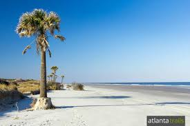 Island Beach State Park Map by Cumberland Island Camping Hiking And Backpacking Guide