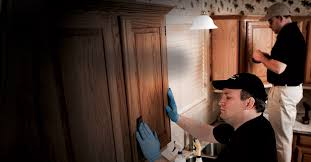 Home Depot Enhance Kitchen Cabinets Hardwood Refinishing N Hance At The Home Depot