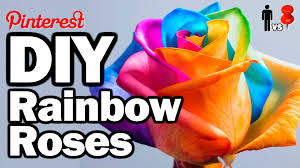 multicolored roses diy rainbow roses vs pin 26