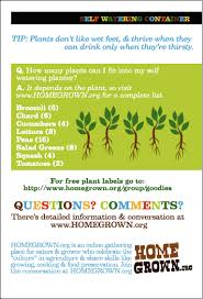 How To Make A Self Watering Planter by Www Homegrown Org Blog Archive Homegrown How To Cards How To