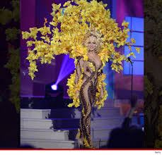 the 15 most costumes from the 63rd miss universe