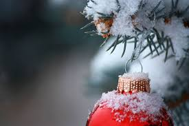 winter ornaments pictures photos and images for