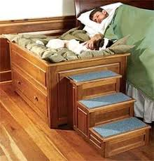 Bunk Bed For Dogs Headboard Woodworking Plans Roof Top Dog Houses And Decking