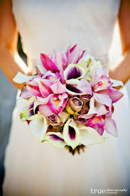 picasso calla 7 best picasso calla weddings images on calla
