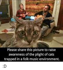 Cat Trap Meme - please share this picture to raise awareness of the plight of cats