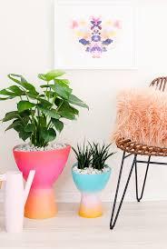 413 best indoor plants images on pinterest indoor plants