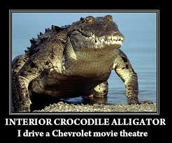 Alligator Meme - image 64857 interior crocodile alligator know your meme