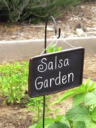 salsa garden home design ideas and pictures