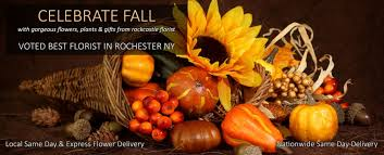 Flower Delivery Syracuse Ny - florist rochester ny flowers rochester ny rockcastle florist
