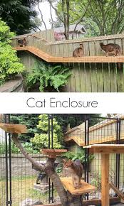 best 25 outdoor cat enclosure ideas on cat enclosure