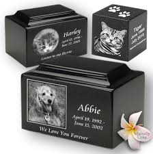 urns for pets photo cremation urns direct black granite cremation urns and