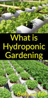 best 10 homemade hydroponics ideas on pinterest homemade