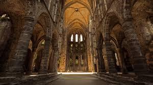 belgian shepherd louisiana villers abbey in villers la ville belgium patty piturlea 500px