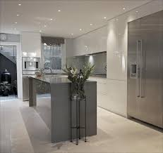 Contemporary Kitchen Cabinets 208 Best Kitchen Contemporary Images On Pinterest Kitchen