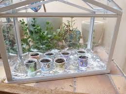 socker greenhouse indoor mini greenhouse home design