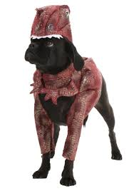 pet halloween costumes uk pet raptor costume