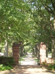 file umd walkway trees jpg wikimedia commons
