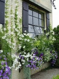 best 25 balcony flower box ideas on pinterest balcony flowers