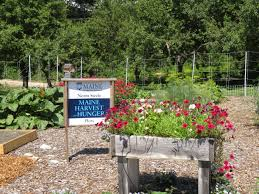 gardens at tidewater farm cooperative extension in cumberland