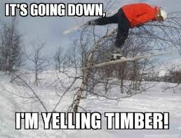 Ski Meme - photos twenty funniest skiing memes westword