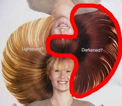hair color dark on top light on bottom yin yang hair the secrets of life 19 happeh theory