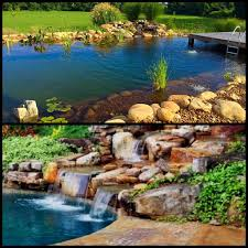 Backyard Swimming Ponds - recreational ponds natural swimming pools nsp u2013 carter u0027s
