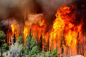Wildfire Chicago Reservations by Utah Wildfire Doubles In Size Again Fire Fighter Nation