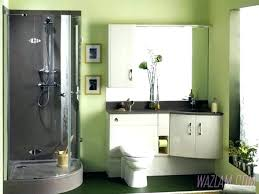 bathroom painting ideas pictures bathroom painting color ideas derekhansen me