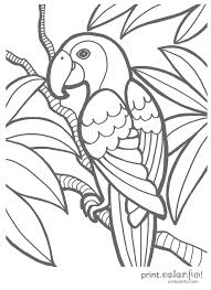 island coloring pages tropical creativemove