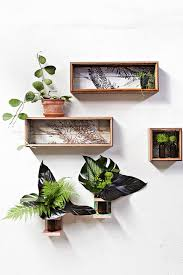 Interior Plant Wall 11 Incredible Ways To Use Indoor Plants