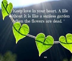 Flower Love Quotes by Flowers Thoughts Leaves Love Flowers Sunshine Nature Words Heart