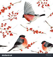watercolor seamless pattern bullfinch red berries stock