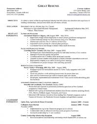resume format 2013 sle philippines articles updated resume sles data analyst resume sles template data