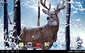 live halloween background winter forest live wallpaper android apps on google play