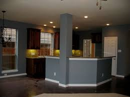 Kitchen Paint Colors With Dark Cabinets Kitchen Kitchen Paint Color Ideas Dark Cabinets Dark Kitchen