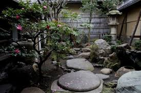 small japanese gardens decorating clear