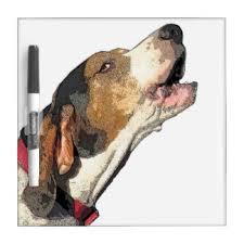 bluetick coonhound treeing treeing walker coonhound gifts on zazzle