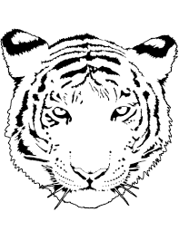 tiger portrait coloring page free printable coloring pages