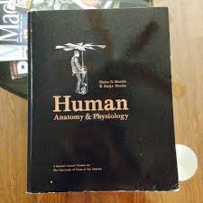 human anatomy u0026 physiology by marieb u0026 hoehn 2nd custom version