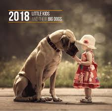 dog breed calendar publishers dogs breed sierramichelsslettvet