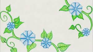 flower drawing morning glory time lapse youtube