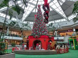 free photo decoration tree shopping center max