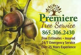 Business Cards For Tree Service Premiere Tree Service Tree Services 635 Lee Shirley Rd