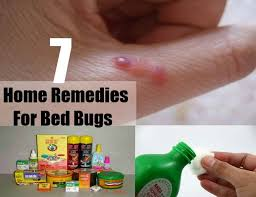 natural bed bug remedies 7 home remedies for bed bugs home remedies natural remedy